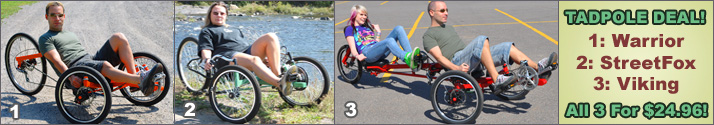 3 trike plans for under